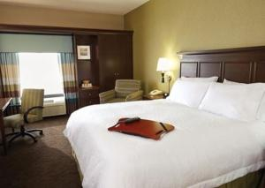 Hampton Inn & Suites San Antonio Brooks City Base, TX, Hotel  San Antonio - big - 3