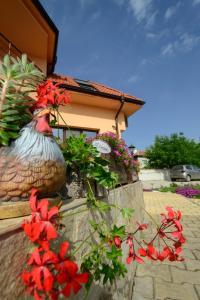 Guesthouse Ana-Val, Dovolenkové domy  Sandanski - big - 20