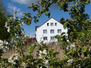 Das Haus am Teich - Groß Grabow