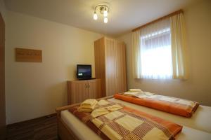 Apartments Luidold, Appartamenti  Schladming - big - 40