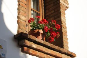 Apartamento Rural Las Palmeras, Country houses  Almonaster la Real - big - 22