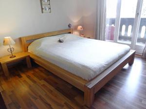 Apartment Regina D3, Apartmány  Villars-sur-Ollon - big - 20