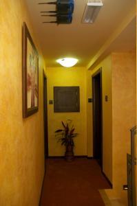 Vila Pina, Apartmány  Zlatibor - big - 20
