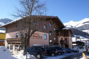Pension Anneliese - Hotel - Rauris
