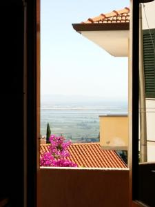 Casa Salvadorini, Holiday homes  Massarosa - big - 33