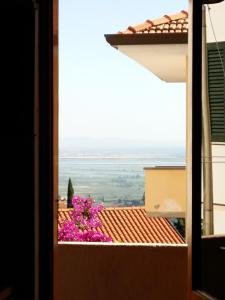 Casa Salvadorini, Дома для отпуска  Массароза - big - 56