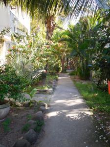 Pousada Ilha Maravilha, Vendégházak  Rio de Janeiro - big - 21