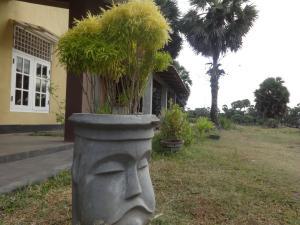 Palm Villa Nilavelli, Hotel  Nilaveli - big - 14