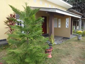Palm Villa Nilavelli, Hotel  Nilaveli - big - 13