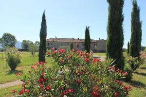 Il Grifone A Cortona Residence, Aparthotels  Cortona - big - 54