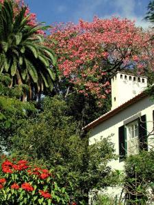Quinta da Bela Vista (16 of 63)