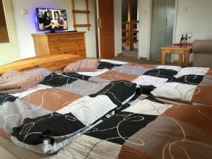 EKOstatek Michalov, Appartamenti  Stachy - big - 4