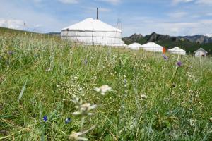 我的蒙古環保蒙古包露營地
