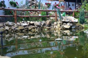 Portile Ocnei, Penziony  Tîrgu Ocna - big - 51