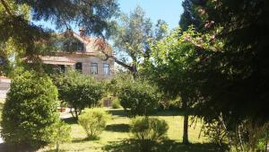 Quinta da Florencia Clube de Campo AL - Accommodation - Vila Franca