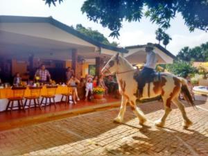 MS Campestre La Potra Plus, Hotels  Villavicencio - big - 17