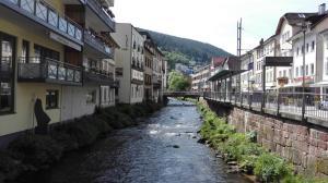 Wildbadferien - Calmbach