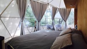 Domos Treepod - Hotel - Las Trancas