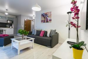 VIP Apartamenty Centrum