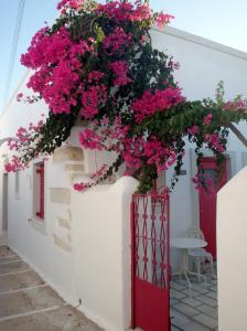 Margo Antiparos Antiparos Greece