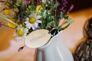 obrázek - Apartments Biberhof