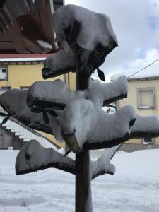 As Miguiñas do Cebreiro, Affittacamere  Piedrafita - big - 35