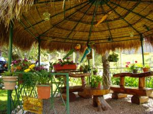 Pousada Refugio Comodo, Гостевые дома  Кампус-ду-Жордан - big - 14