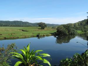 Daintree Riverview Lodges