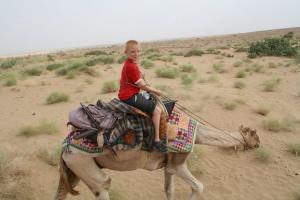 Hotel Deep Mahal, Bed and Breakfasts  Jaisalmer - big - 63
