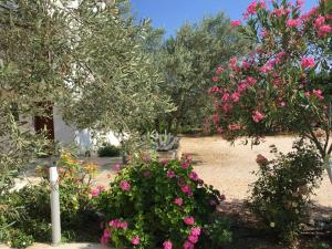 Hani Inn Argolida Greece