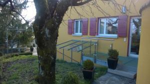 Swiss Borzoi House, Bed & Breakfast  Bellerive - big - 57