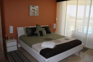 Oasis Ocean View, Appartamenti  Palm-Eagle Beach - big - 19