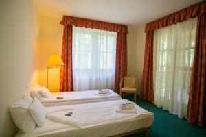 Zichy Park Hotel, Hotels  Bikács - big - 13
