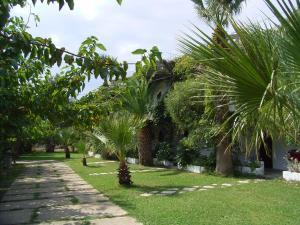 Hostels e Albergues - Damnoni Paradise