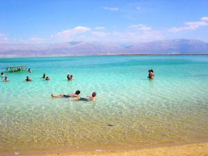 Aloni Neve Zohar Dead Sea, Апартаменты  Неве-Зоар - big - 1