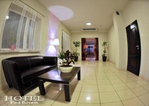 Hotel pod Borem