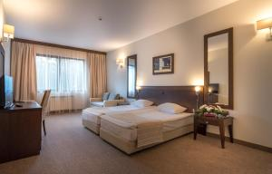 Lion Hotel Borovets