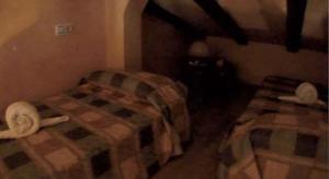 Allotjaments Rurals Can Pere Petit, Apartmanok  Santa Pau - big - 24