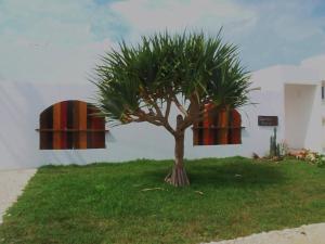 obrázek - Twuriba Resort