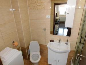 Garsoniera Strada Bucegi, Appartamenti  Sibiu - big - 23