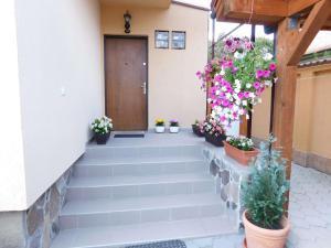 Garsoniera Strada Bucegi, Appartamenti  Sibiu - big - 7