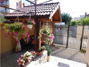 Garsoniera Strada Bucegi, Appartamenti  Sibiu - big - 6