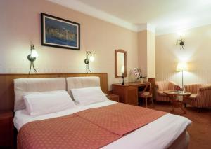 Hotel Aleksandar, Hotels  Vrnjačka Banja - big - 5