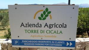 B&B Torre Di Cicala, Bed and Breakfasts  Partinico - big - 19