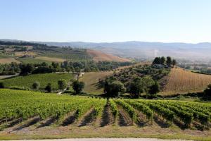 Locanda Palazzone (27 of 131)