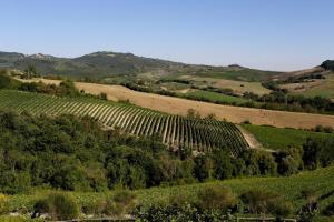 Locanda Palazzone (16 of 131)