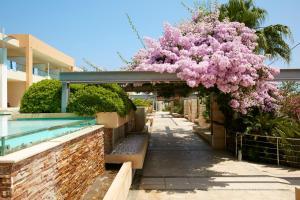 Minoa Palace Resort & Spa (21 of 62)