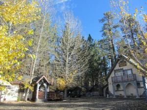 Castle Wood Theme Cottages- COUPLES ONLY, Hotels  Big Bear Lake - big - 69
