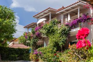Hostels e Albergues - Lemonia Accommodations