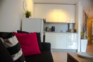 Fancy apartment in heart of Bratislava